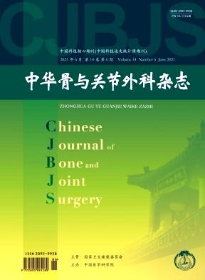 中国骨与关节外科
