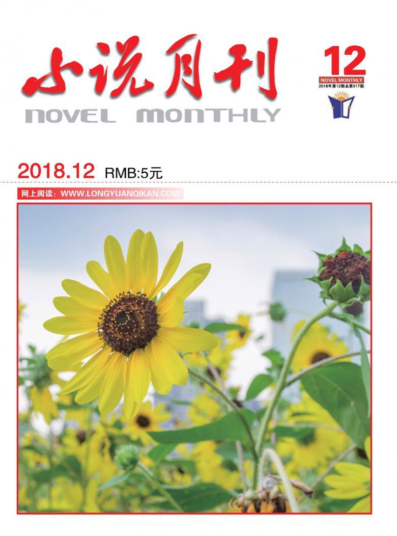 小说月刊杂志社