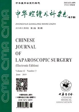 中华腔镜外科(电子版)