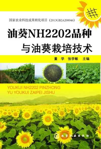 油葵NH2202品种与油葵栽培技术