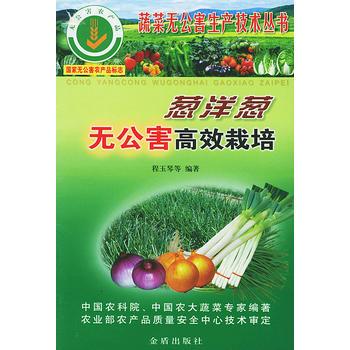葱洋葱无公害高效栽培