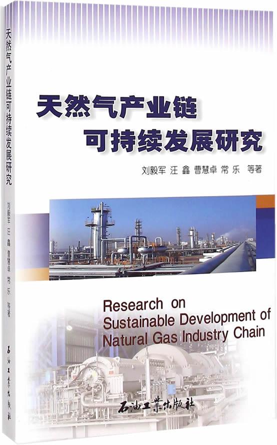 天然气产业链可持续发展研究