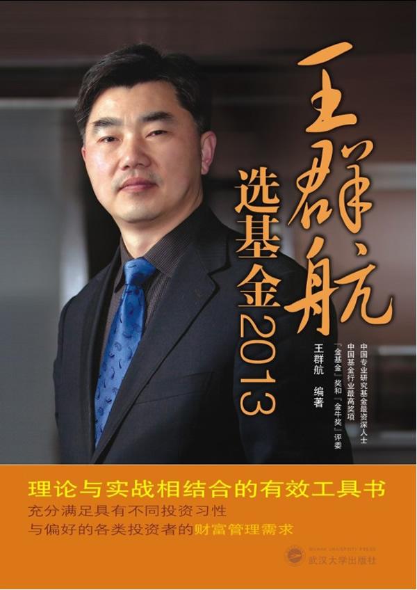 王群航选基金2013