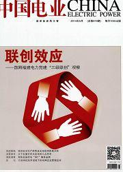 中国电业(技术版)