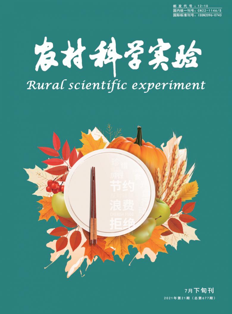 农村科学实验